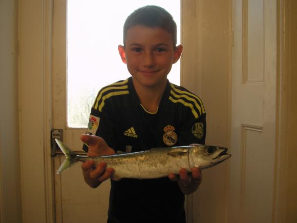 K Bavester Junior Club record Chub Mackerel