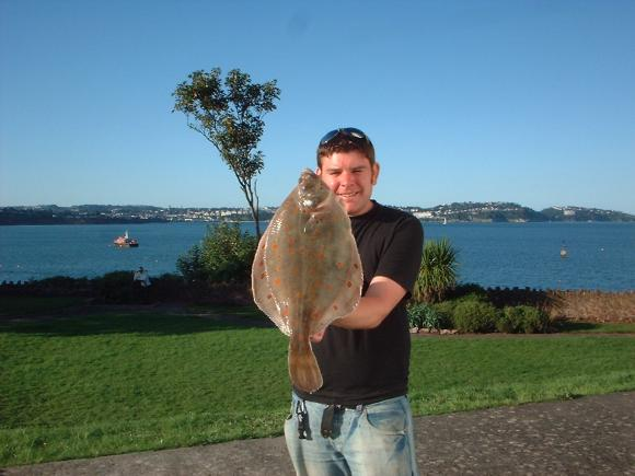 Paul Millmans Plaice