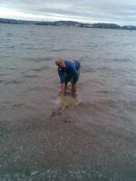 Mark Nathan releasing a Blonde Ray